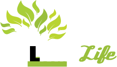 Living Life Ministries